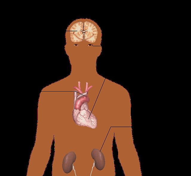 hypertension blood pressure hobe sound